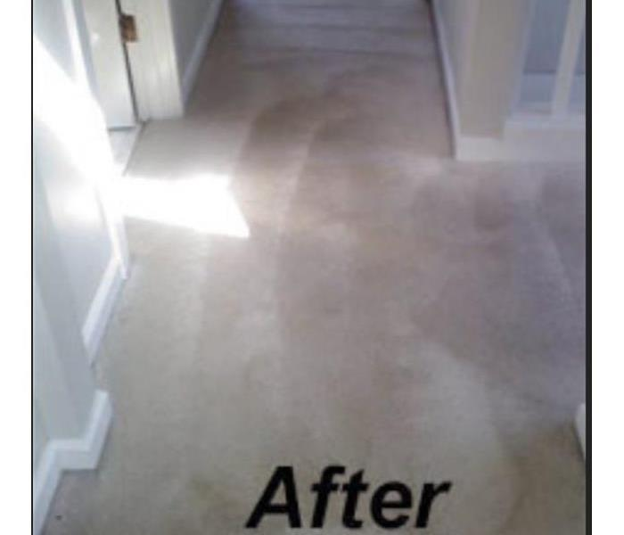 Cleaned residential hallway carpet