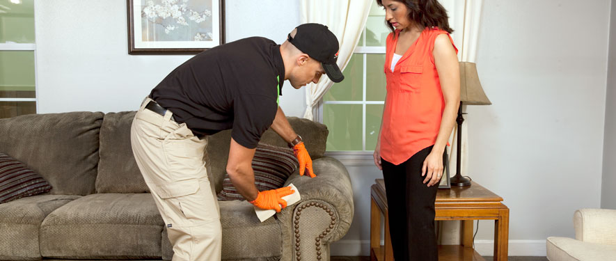 Newnan, GA carpet upholstery cleaning