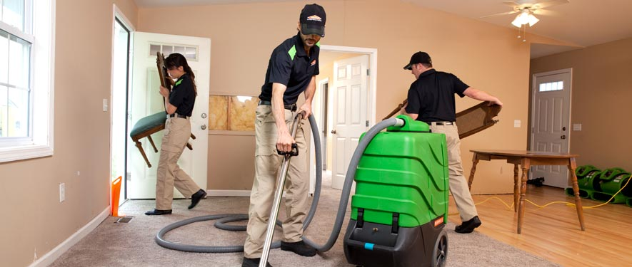 Newnan, GA cleaning services
