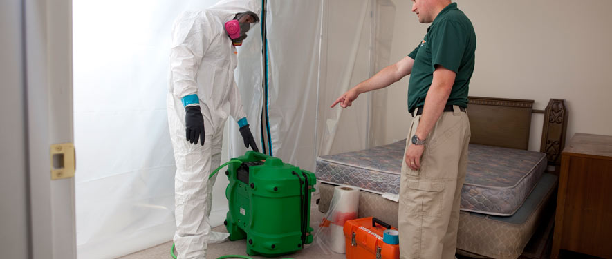 Newnan, GA mold removal process